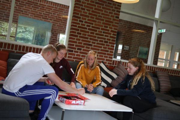 Brætspil Nordjyllands Idrætshøjskole